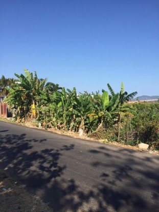Bán đất mặt tiền đường Phước Thắng
